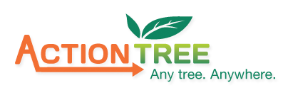Action Tree Service Any Tree Anywhere